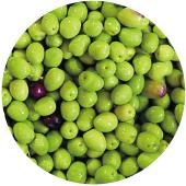 橄欖油(EXTRA